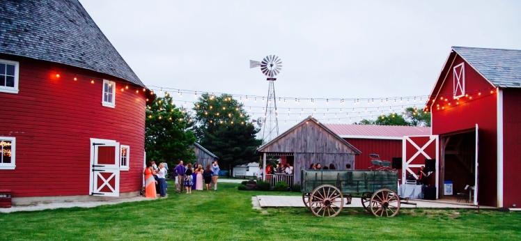Mahaney Wedding (1040)